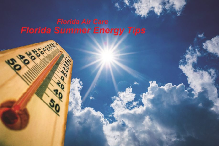 Florida Summer